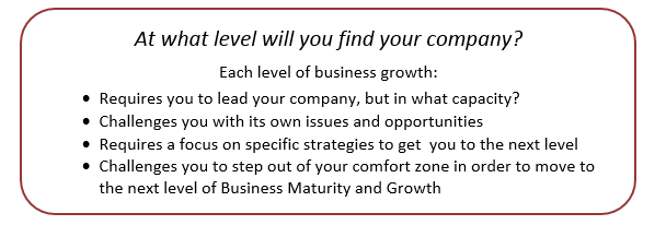 At what level will you find your company