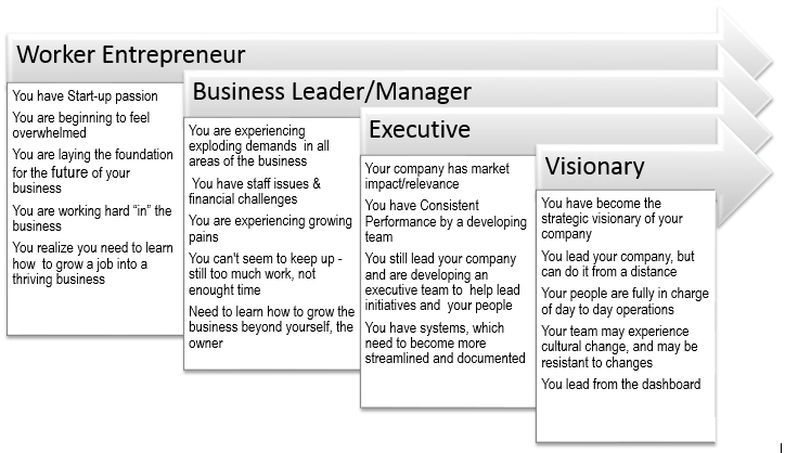 Business Maturity Index 1